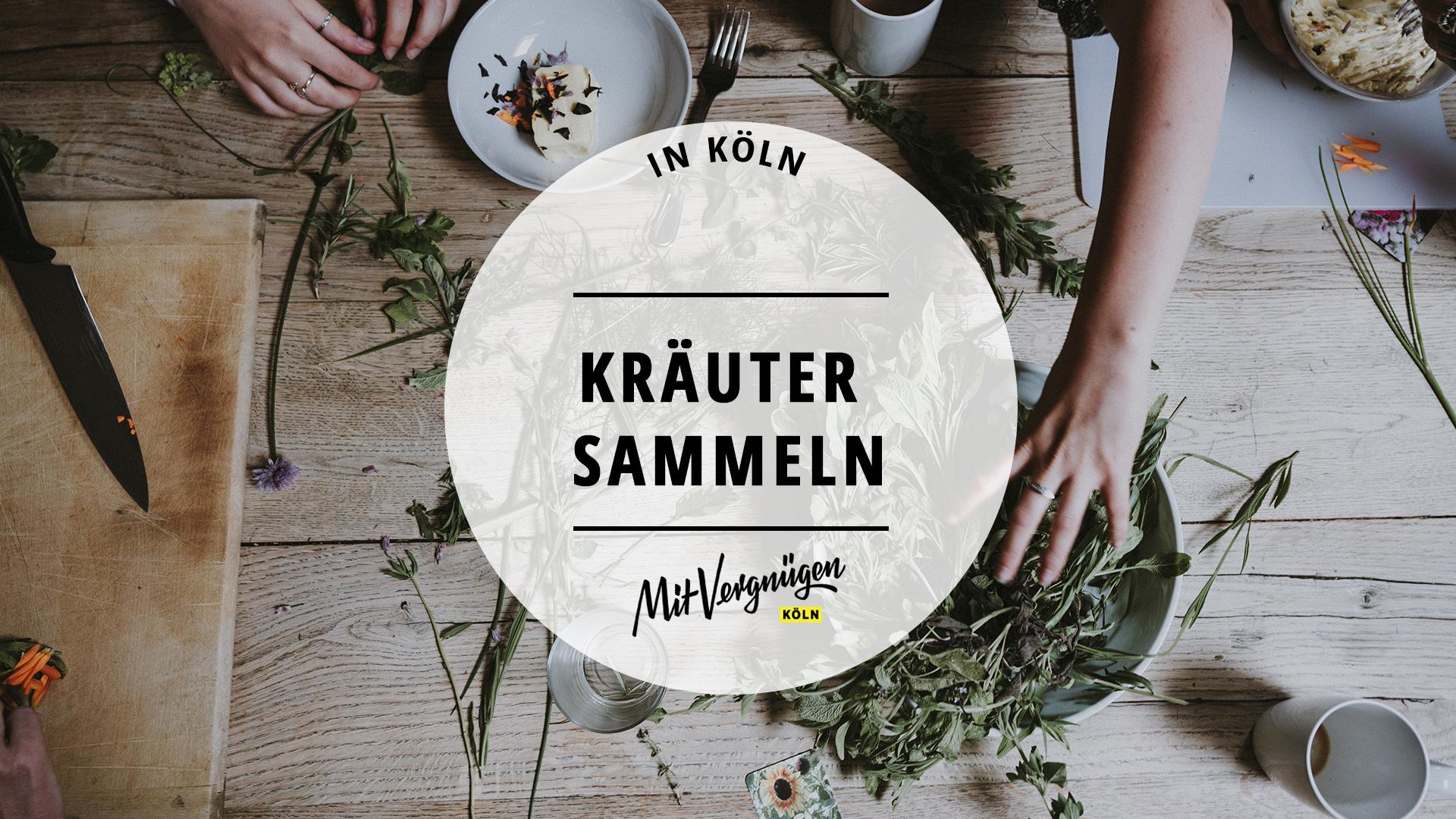 Kräuter Köln
